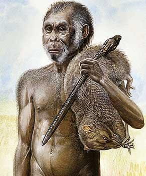 homo_floriensis