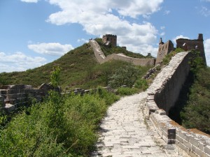 The unrestored portion of the Great Wall where plants have taken back over where once was bare stone.