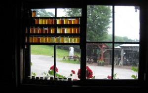 Morse Sugarfarms is a small local farm that sells pure 100% Vermont maple syrup and is one of the few farms that still does so in the state.