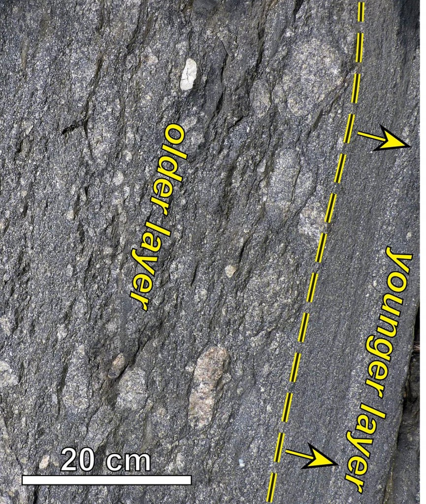 Overturned strata in the Rockfish Conglomerate, notice younger layers below older layers.