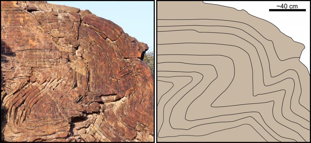 crumpled strata in Oman