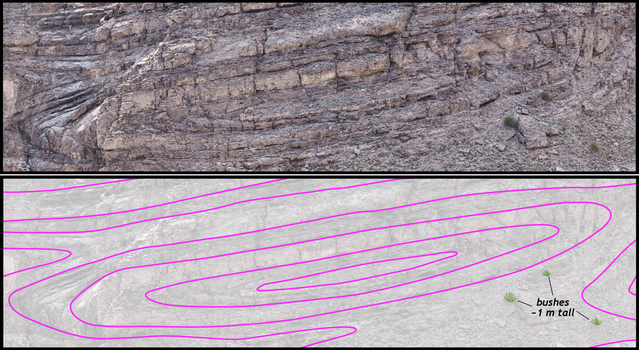 Close up of the central part of the exposure at Wadi Mayh, Oman.  Lower image is a tracing of the layers wrapping around the sheath fold.
