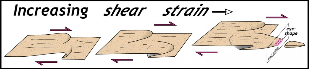 Schematic model illustrating the development of a sheath fold.  Note distinctive eye-shape in cross section normal to sheath axis.