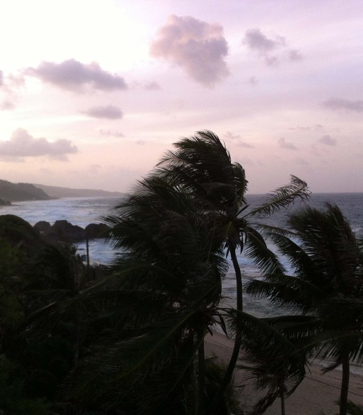 The trade winds freshen things up on Barbados' eastern coast.