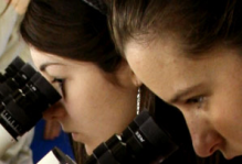 students studying a microscope