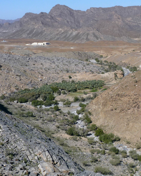 The desert landscape along Wadi Bani Ghafir in Oman, note the date palm grove.