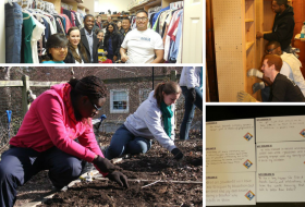 MLK Social Justice and Service Program working on various projects