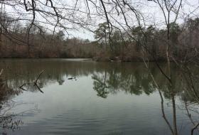 springtime at lake matoaka