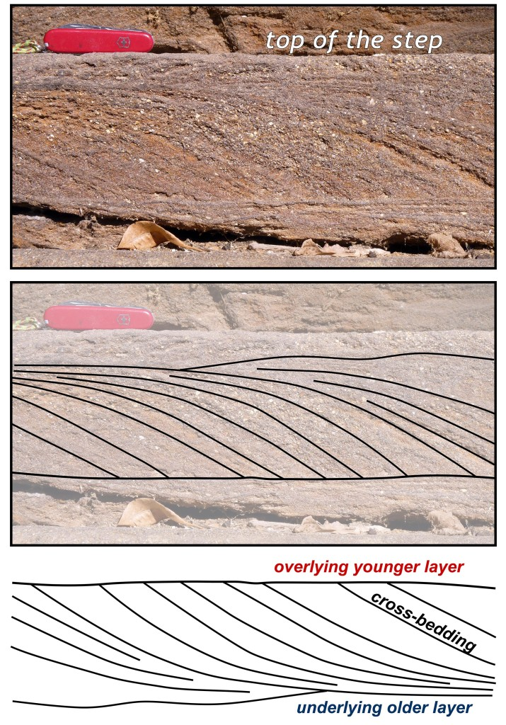 Cut block of sandstone that forms steps at the south entrance of Menokin. Note the well-developed cross-bedding and stratification (traced in the center image). The stone was laid 'upside down' such that the top of the stone block is the underlying older layer of sandstone. The bottom image shows the strata in their original 'rightway up' orientation. The cross-beds formed as flowing water transported sand (from left to right in the lower image) over a ripple.