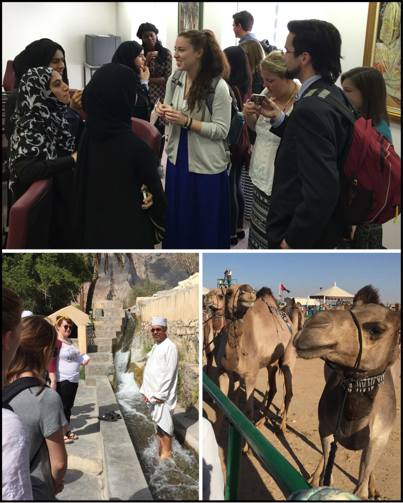 Top: meeting with students at Sultan Qaboos University. Lower Left: Dr. Abdullah al Ghafri in the flaj at Birkat al Mowz. Lower Right: Prize-winning camels at the Muzayanat al Ibl.