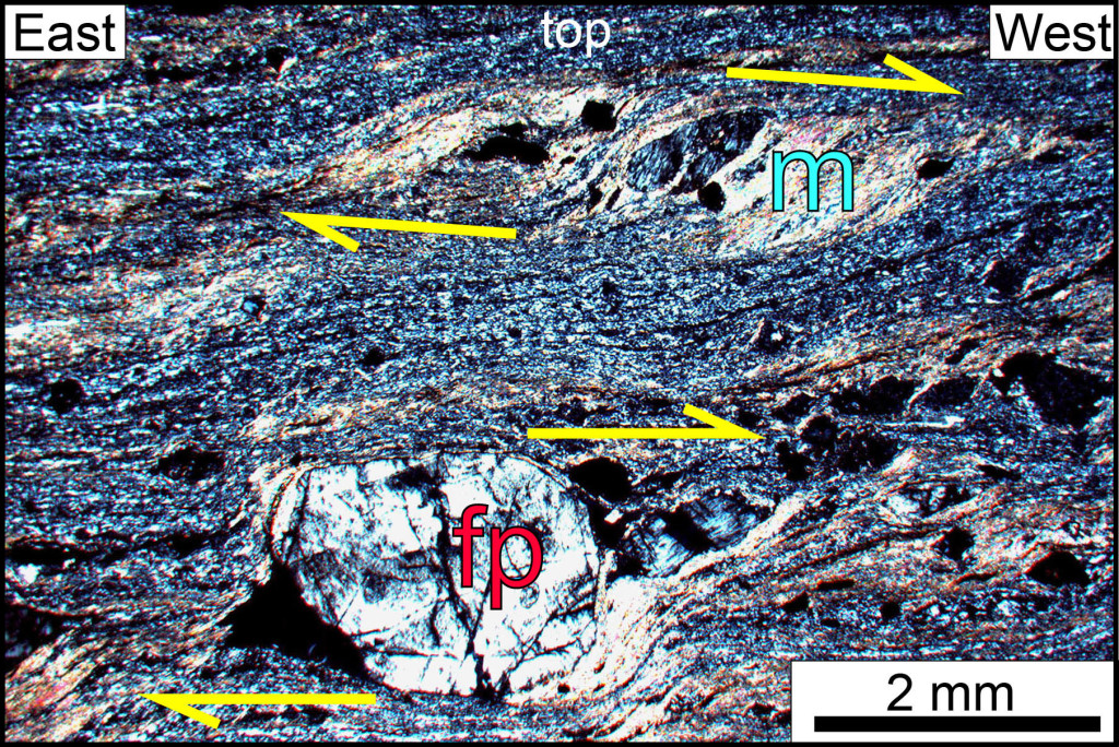 Micrograph of a Garth Run mylonite, Blue Ridge province, Virginia. Section is parallel to the lineation and perpendicular to the foliation. Note the top-to-the-west asymmetry, indicative of west-directed shearing. fp- feldspar porphyroclast, m- muscovite, a metamorphic mineral that crystallized during deformation.
