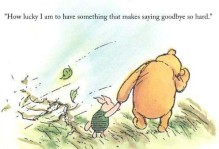 Winnie the pooh holding piglet's hand