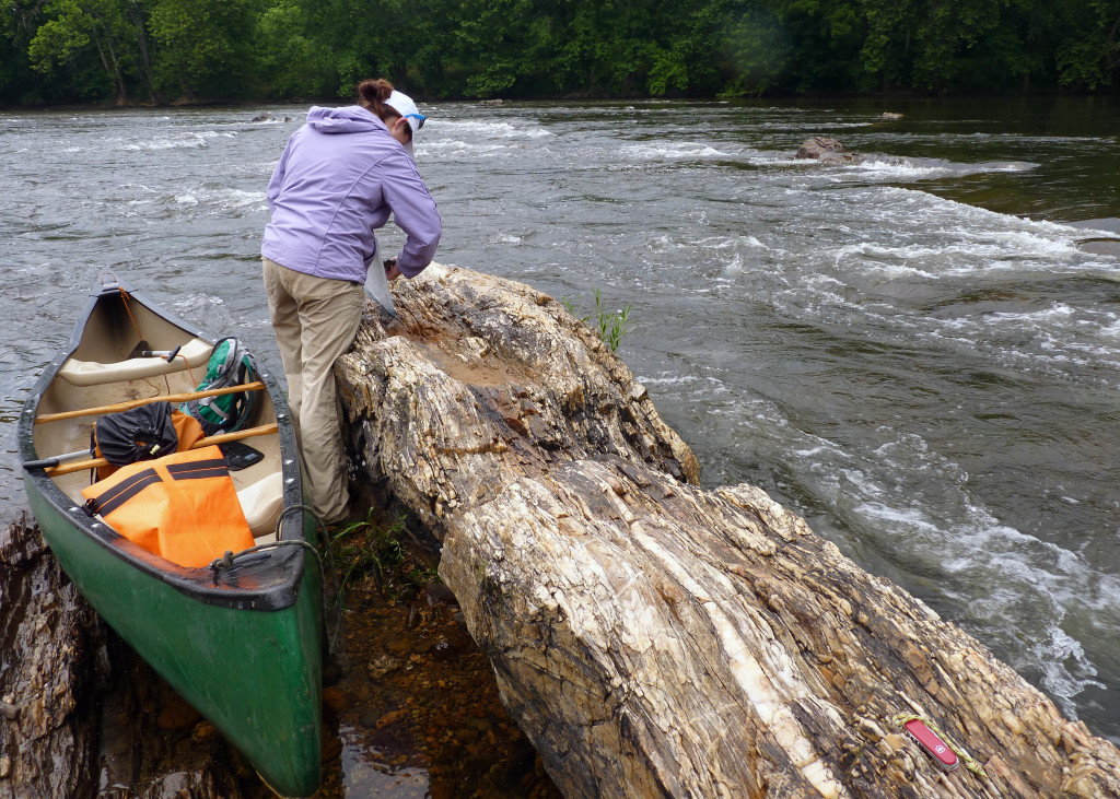 Quartzite outcrop in the James River (view to the northeast). Geologist Megan Flansburg (W&M Geology '15) measures the orientation of geologic structures. Note my 17'-canoe for scale- more on that old river-beaten canoe in my next post.
