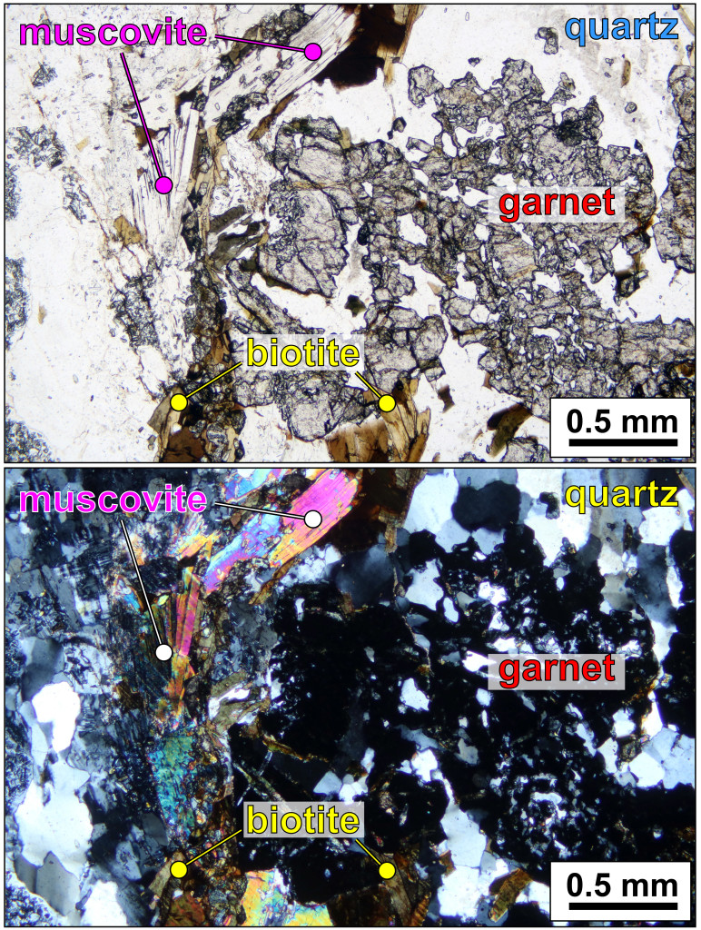 Micrograph illustrating metamorphic minerals in the Blue Ridge basement complex.