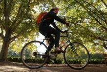 a student riding a bike near the sunken garden