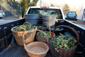 back of a Facilities Management pickup with woven baskets of trimmed holly leaves and berries