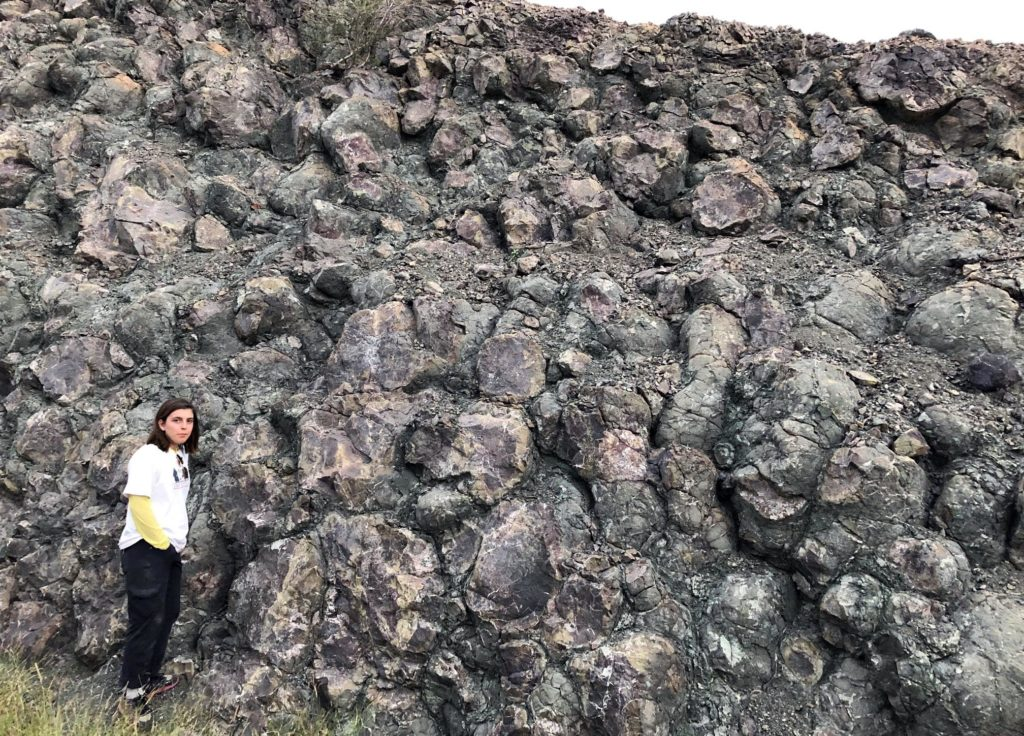 Evan is standing close to the pillow lavas in the Oman ophiolite. The lavas are much higher than he is.