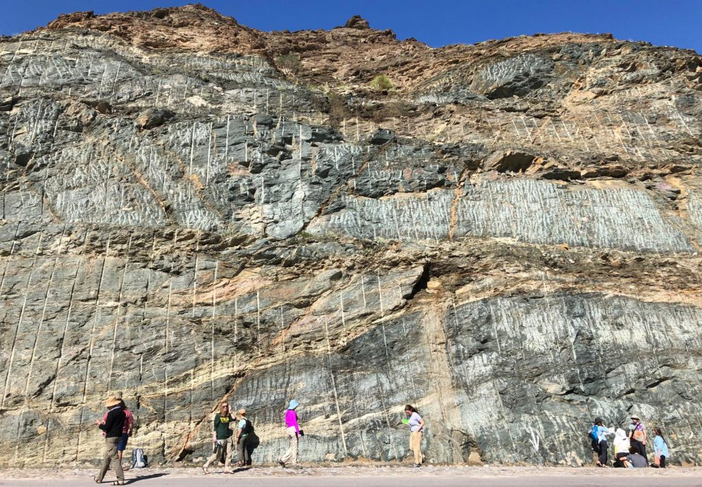 Students examine a road cut in Oman, looking very small at the base of the bedrock exposure.