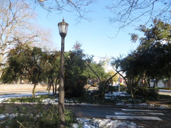 Alternate view of College Corner showing broken trees and branches on a snow-covered area