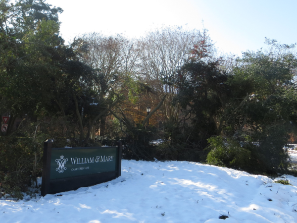 Old William & Mary wooden sign surrounded by snow and Yaupon trees crashed down towards the ground
