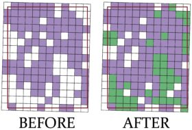 Before and after view of the quadrangle divided into a grid of 180 boxes, color coded purple (data gathered in 2019 trip) and green (data gathered in this trip).