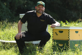 Person sitting in a field next to a pair of green and gold bee hive boxes with the W&M logo on them.