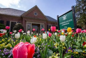 Pink, white and yellow tulips in full bloom in front of the brick undergraduate admission building and sign.