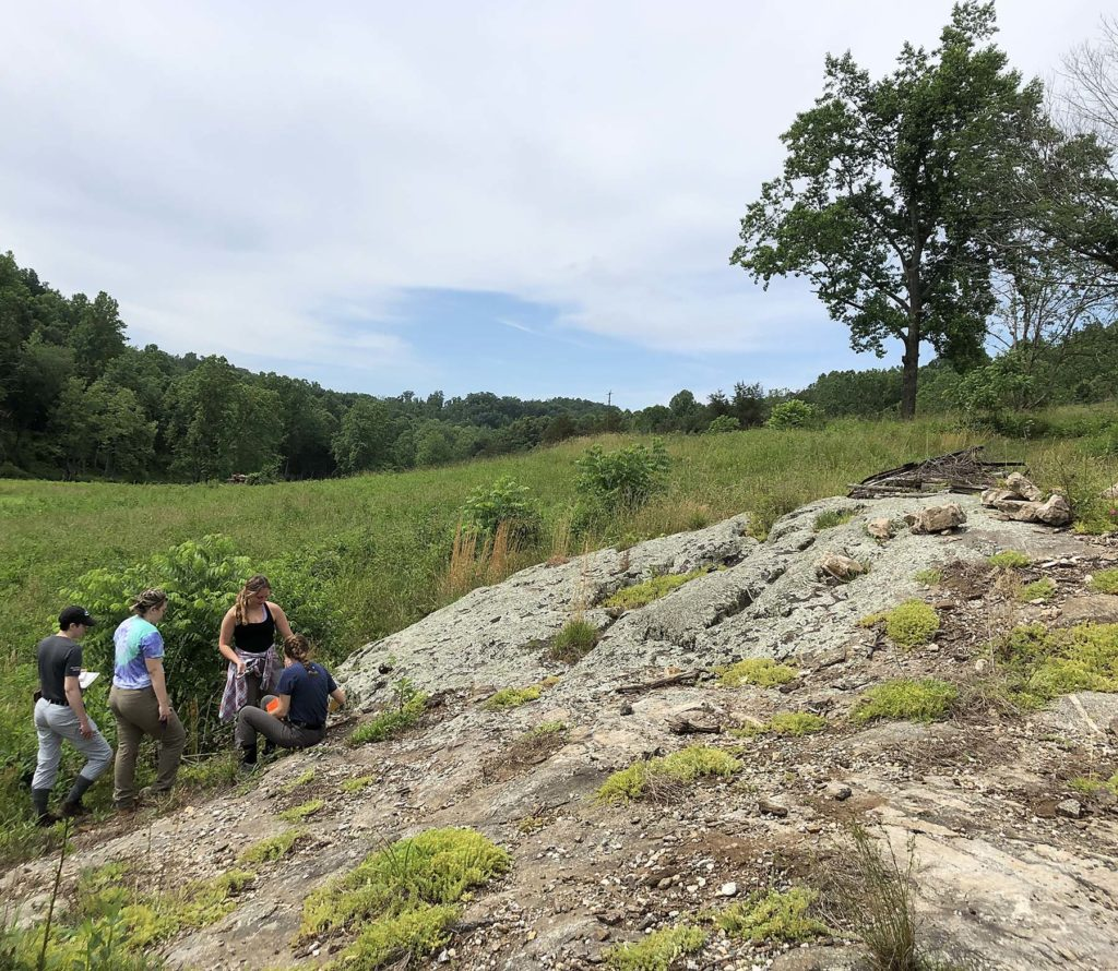 Four students in a green open area standing and sitting on a large grey outcrop.